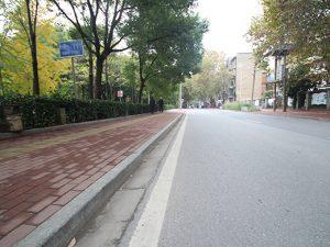 麻城芝麻灰路沿石